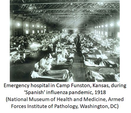 Emergency hospital in Camp Funston, Kansas, during 'Spanish' influenza pandemic, 1918 (National Museum of Health and Medicine, Armed Forces Institute of Pathology, Washington, DC)
