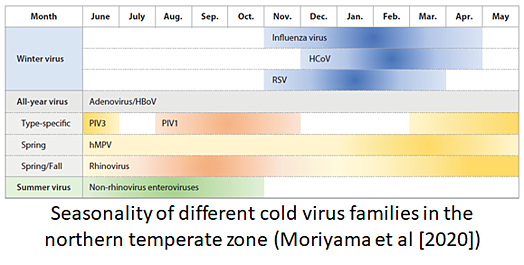 Seasonality of different cold virus families in the northern temperate zone (Moriyama et al [2020])